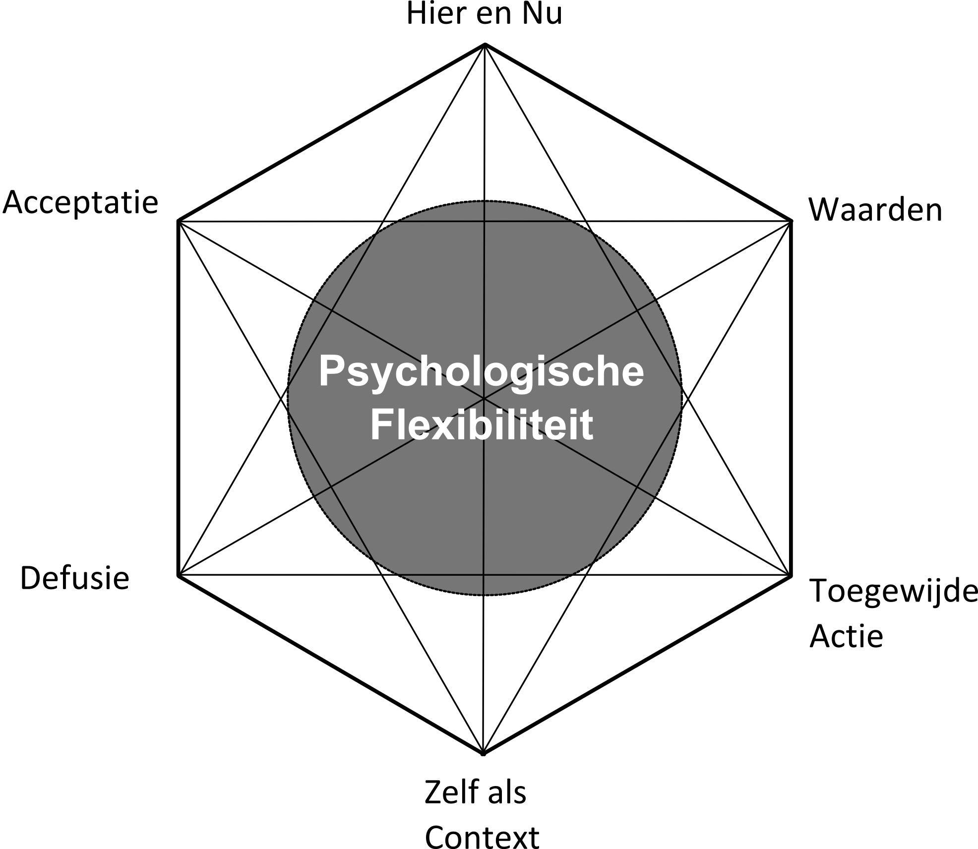 ACT-hexaflex.jpg